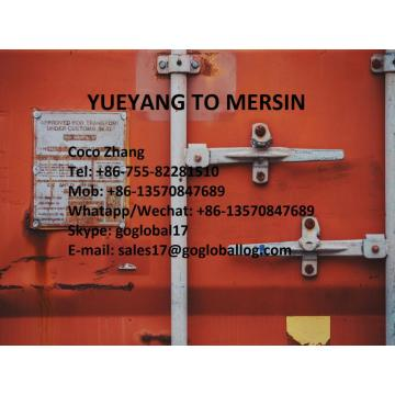 Hunan Yueyang Sea Freight to Turkey Mersin
