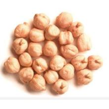Factory directly for Organic Dried Chickpeas Good Quality Chickpea Beans export to El Salvador Supplier