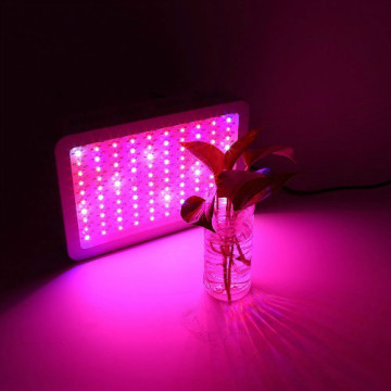 LED Full Spectrum Grow Light-Lampe für Blumen