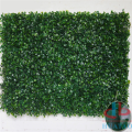 Indoor Artificial Living Green Wall