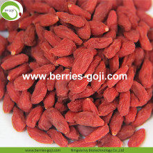 Low Sugar Natural Nutrition Sweet Conventional Goji Berries