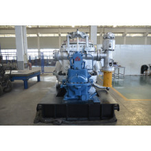Low Pressure Condensing Steam Turbine