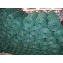 hexagonal mesh wire fences