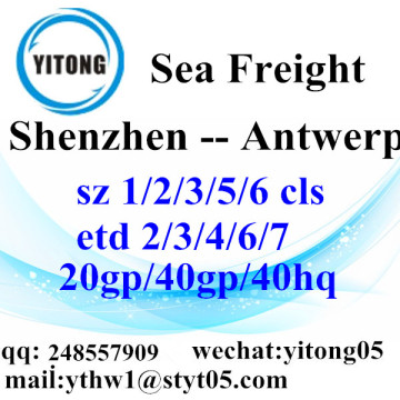 Shenzhen Sea Freight Shipping Agent to Antwerp