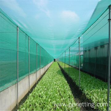 2m×100m Green Insect Net
