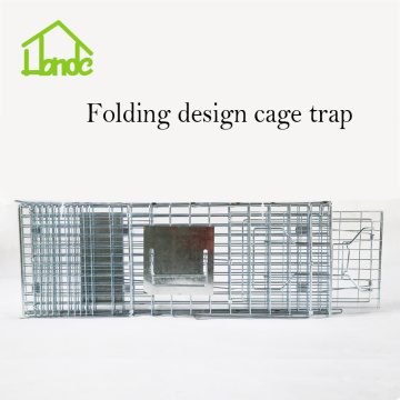 Collapsible Feral Cat Traps