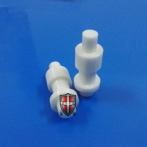 Lowest Price for Ceramic Zirconia Jet Plunger zirconia ceramic plunger insulator machinery parts export to Spain Manufacturer
