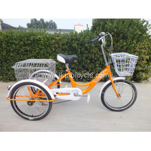Tricycle Cargo Bike with Rear Steel Bracket