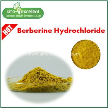 pharma grade berberine powder 97%