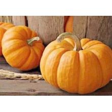 Vegetable Pumpkin on sale