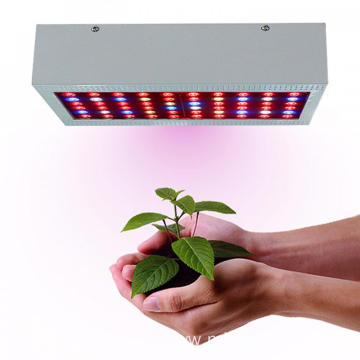 60*5W LED grow light