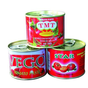 2200g Canned Tomato Paste