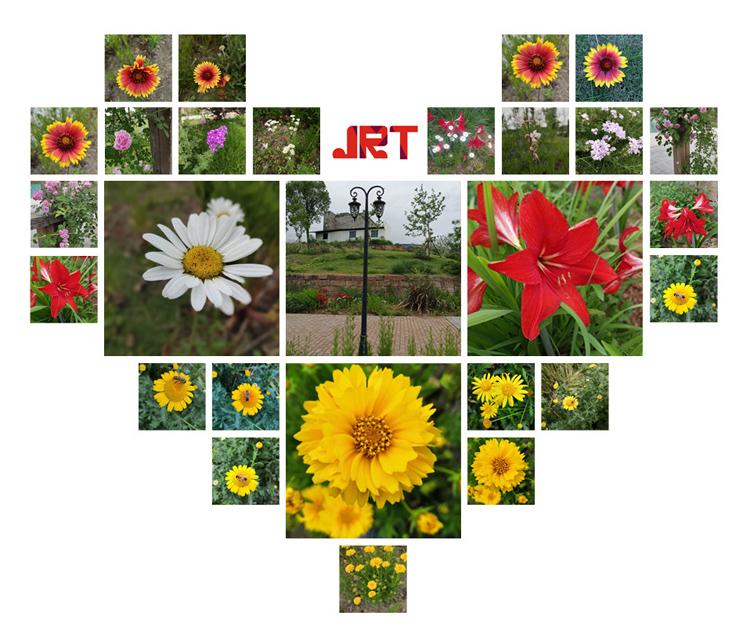 JRT - 5 - Blumen
