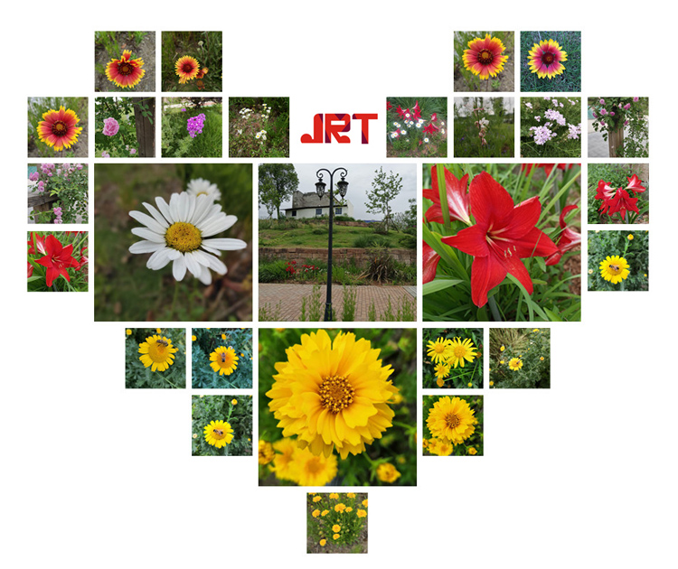 JRT - 5 - Flowers
