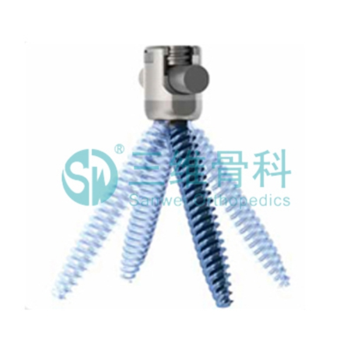 Multiaxial Pedicle Screw 2