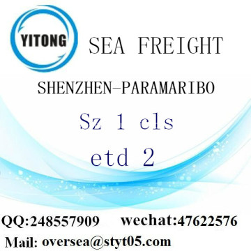 Shenzhen Port LCL Consolidation To Paramaribo
