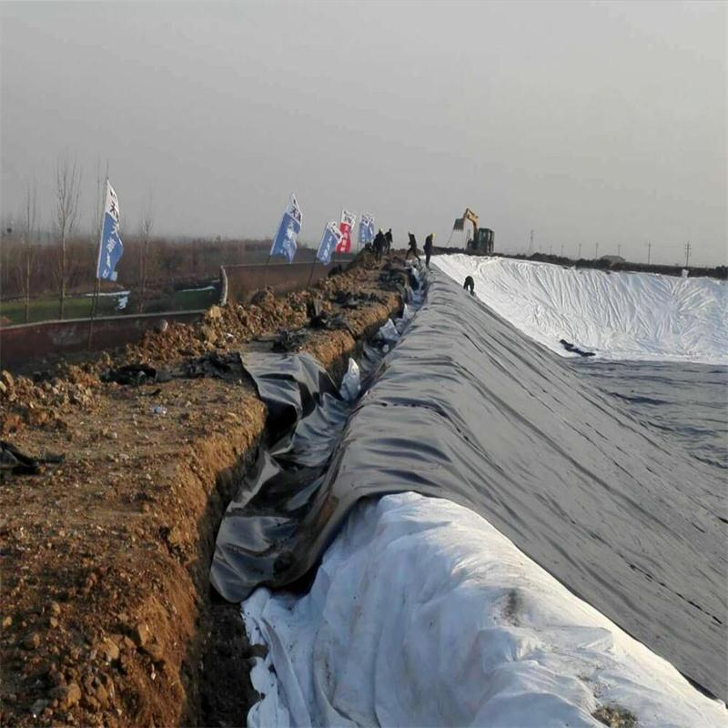 dam liner geomembrane Anchor Gully