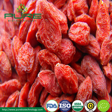 New Collections Qinghai GojI Berry