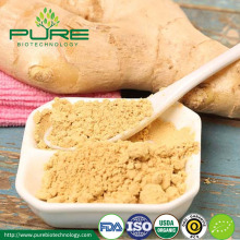Medicinal value Certified Organic Ginger Herb Root Powder