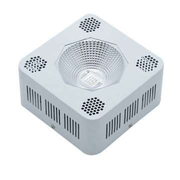 96W COB Small Size High Power LED Grow Light indoor