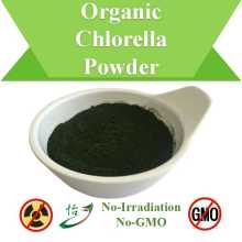 Non-Irradiation & Non-GMO Organic Chlorella Powder