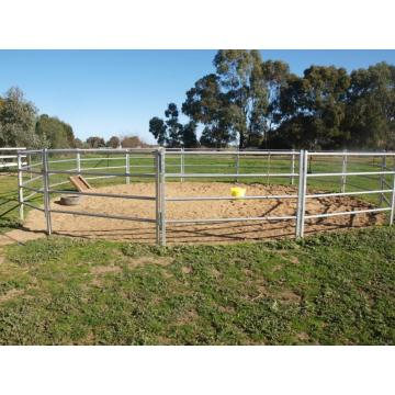 corral sheep lowes cattle panels horse fence