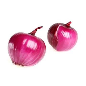 Export The Top Quality Red Onion