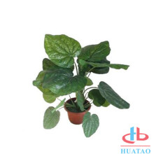 PE Artificial Potted Plants For Your Restaurant