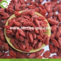 Factory Supply Fruit Nutrition Dried Fruits Goji Berries