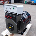 new type brush 20kw dynamo ac generator head