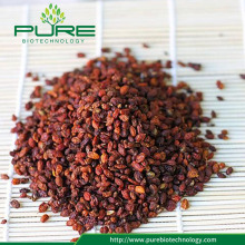 Dried Sea Buckthorn berry fruit