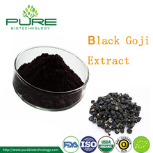 Natural Black Wolfberry Fruit Extract