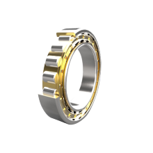 Cylindrial Roller Bearings N300 Series