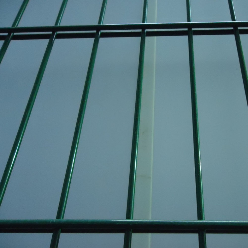 868 Double Wire 2d Panel Fence China Manufacturer