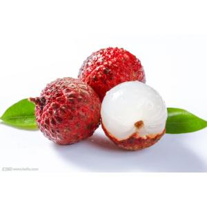 Chinese Sweet and Yummy Litchi