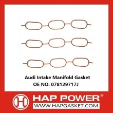 Factory Supplier for Intake Manifold Gaskets,Exhaust Manifold Gaskets,Engine Manifold Gaskets Supplier in China Audi Intake Manifold Gasket 078129717J supply to Djibouti Supplier