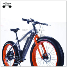 Online wholesale 19inch fat tire ebike