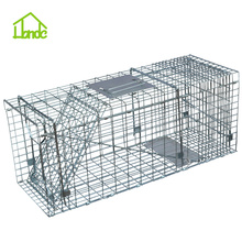 OEM China for Medium Cage Trap,Animal Hunting Traps,Folding Animal Trap,Heavy Duty Live Animal Traps Manufacturer in China Live Catch - Cat Trap Cage supply to China Hong Kong Exporter
