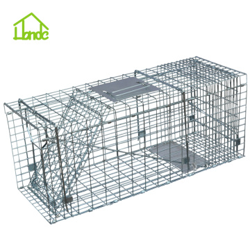 Competitive Price for Medium Cage Trap Live Catch - Cat Trap Cage supply to Tanzania Importers