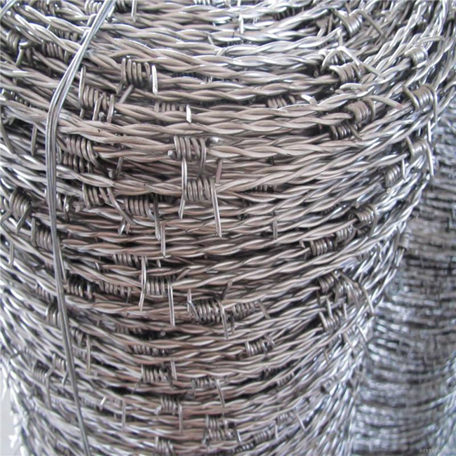 barbed wire mesh01