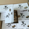 Nutrious and Healthy Food Whole Black Garlic