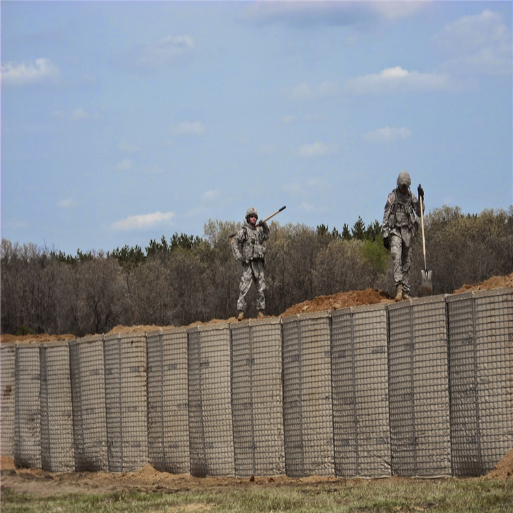 Military Defensive Barrier for Africa