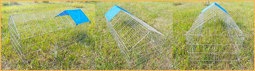 wire chicken kennel