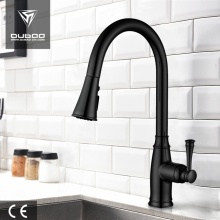 Elegant High Arc Kitchen Sink Tap With Spray