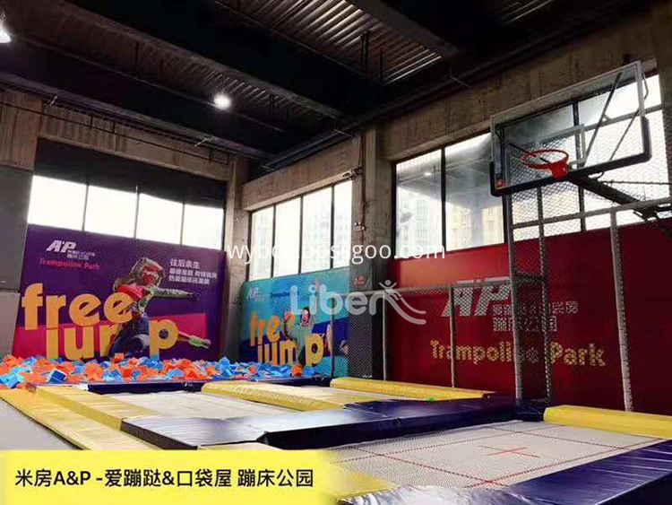 Professonal Trampoline with Basketball