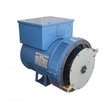 Brushless Lower Voltage Diesel Electric Generator