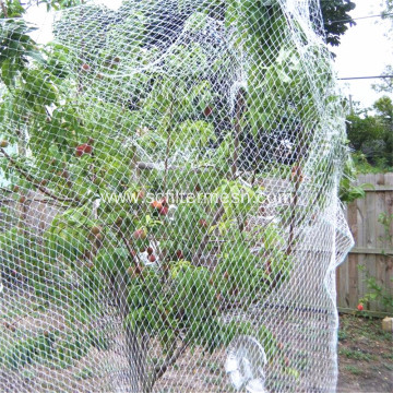 Fruit Tree Safety Plastic Anti Bird Netting