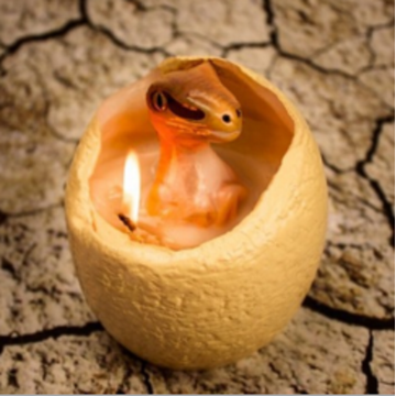 Hatching dinosaur egg candle