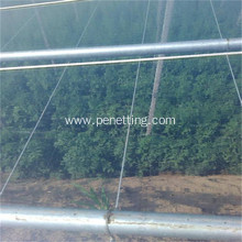 Cheapest Three-layer EVA Film Agriculture Greenhouse