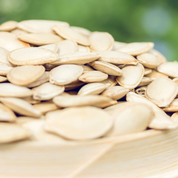 Shine skin pumpkin seeds in shell top